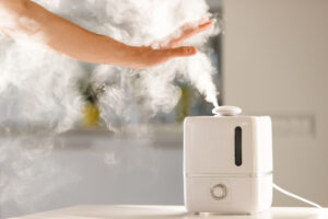 Difference Between Air Purifier and Humidifier: Which One Should You Get?